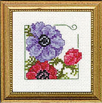 "Picture of 4"" x 4"" - Anemonies"