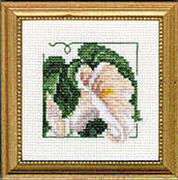 "Picture of 4"" x 4"" - Calla Lily"