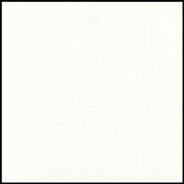 Picture of 28ct. Classic White Evenweave.